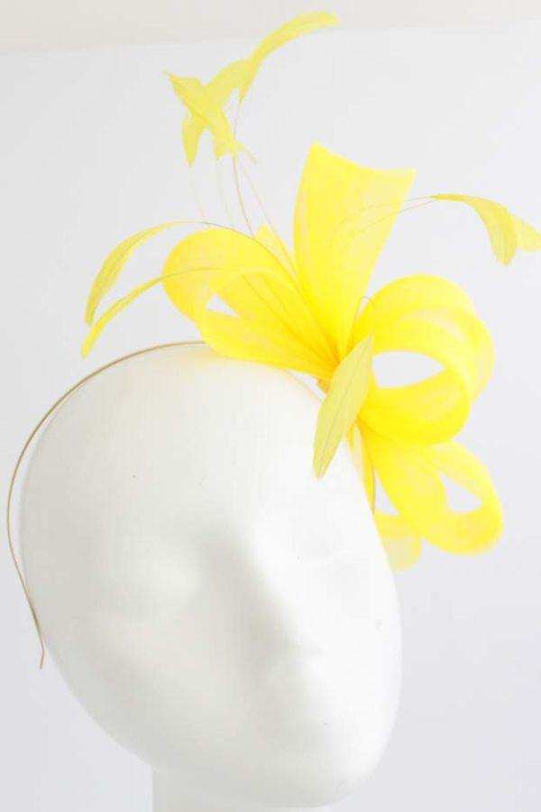 splot z krynoliny z piórami w kolorze intensywnie żółtym